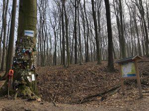 Rockenbauer Pál emlékfa